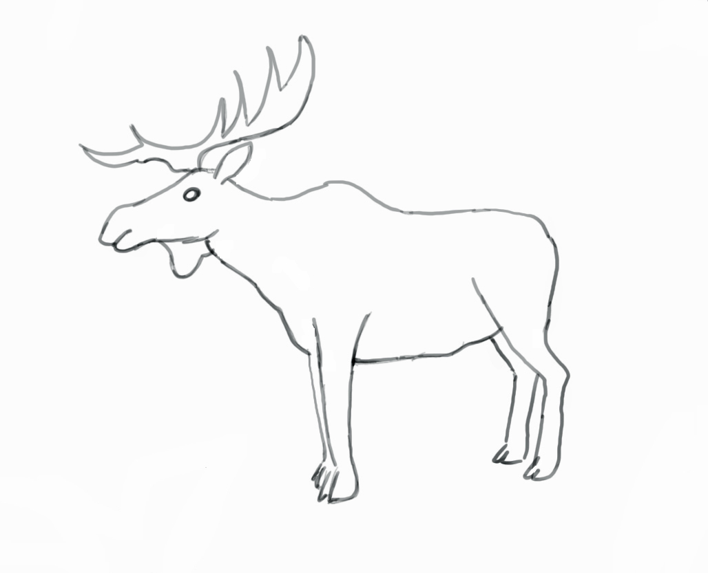 Tundra Animals Drawing At Getdrawings
