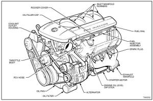 V8 Engine Drawing at GetDrawings | Free for personal use V8 Engine Drawing of your choice
