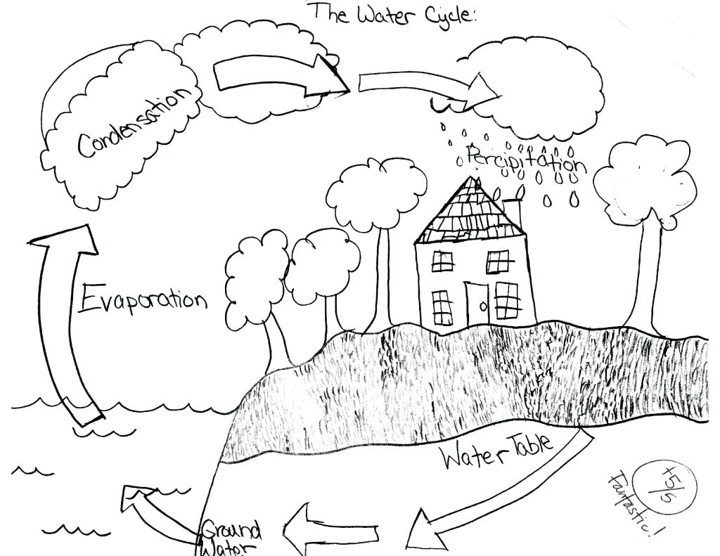 Water Cycle Drawing At Getdrawings