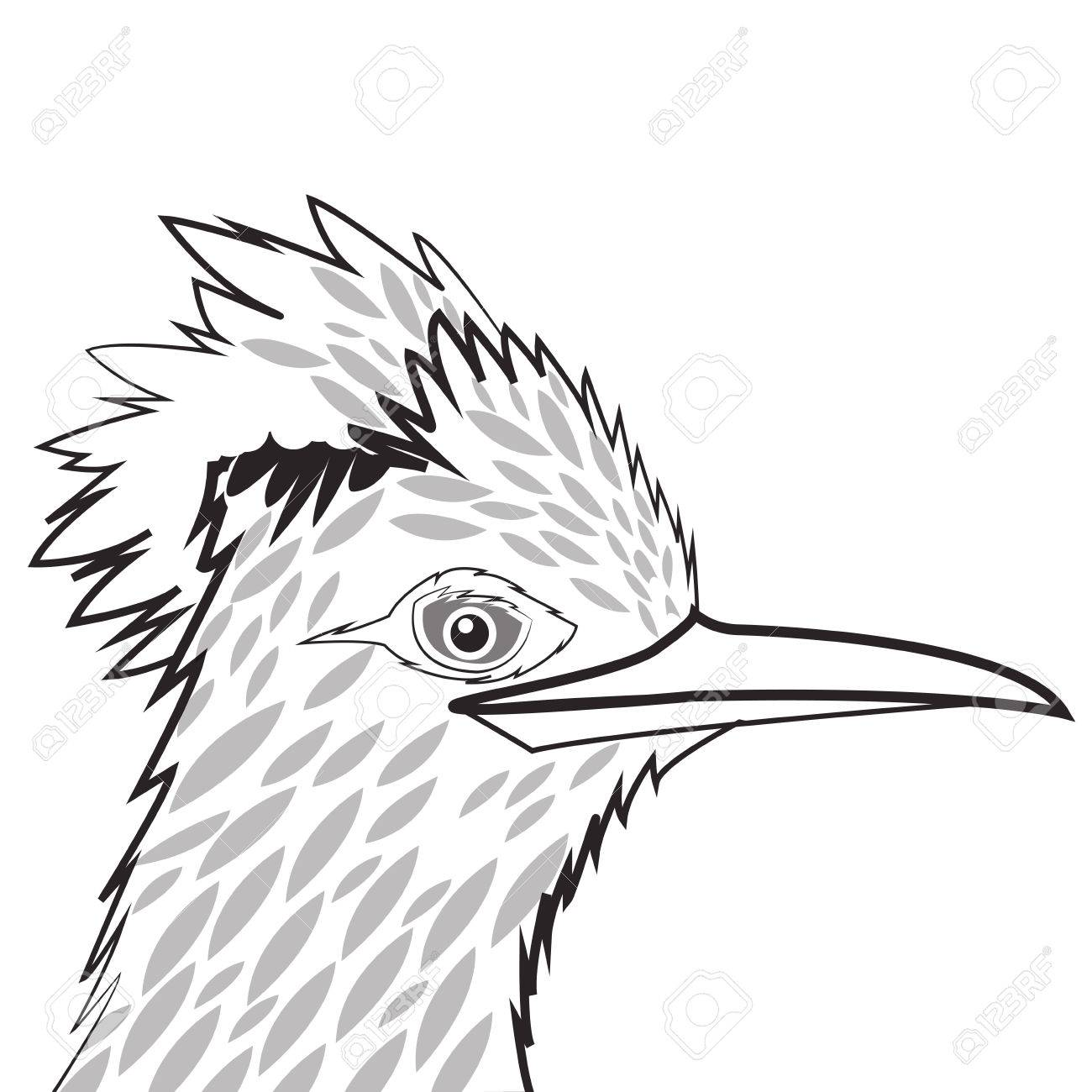 Woodpecker Drawing At Getdrawings