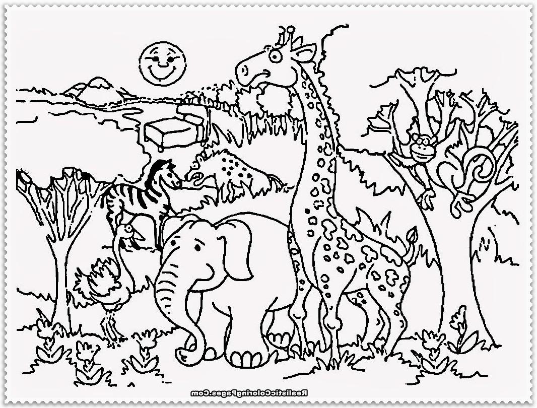 Zoo Cartoon Drawing At Getdrawings