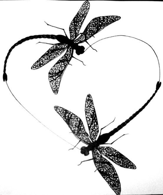 Download Dragonfly Silhouette Tattoo at GetDrawings | Free download