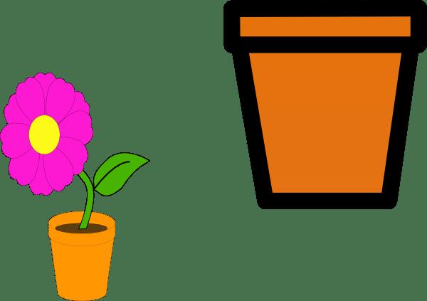 Pot De Lis Fleur Flower