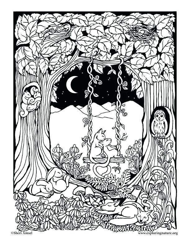 enchanted forest drawing at getdrawings  free download