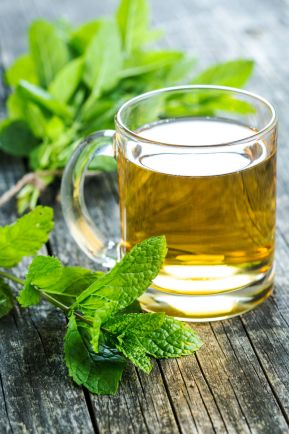 tea changing seasons