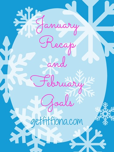 January Recap and February Goals February 2 2015