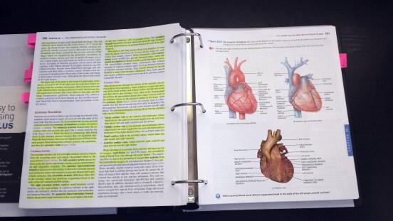 Anatomy Textbook June 19 2015