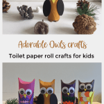 Owl Craft Toilet Paper Roll Toilet Paper Roll Owls Pin owl craft toilet paper roll|getfuncraft.com