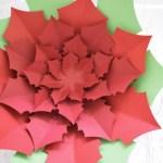 Paper Poinsettia Craft Dsc 0701