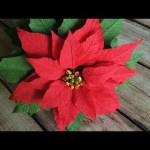 Paper Poinsettia Craft Hqdefault