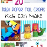 Paper Roll Craft Ideas Toilet Paper Roll Crafts