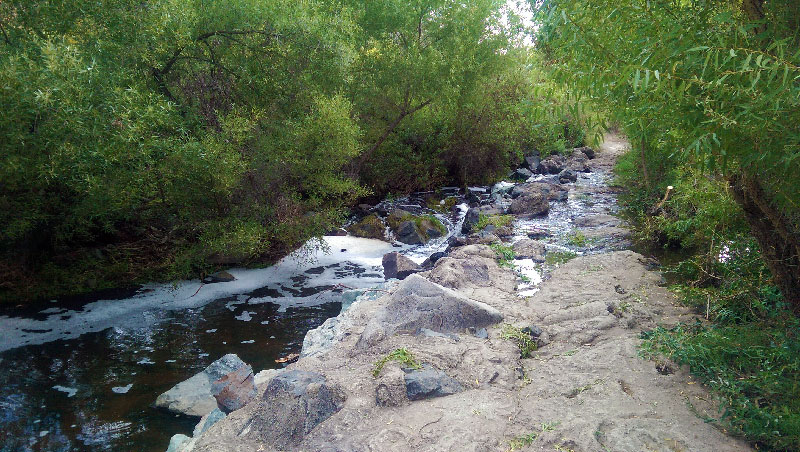 San Diego Hiking: San Diego River in Mission Trails