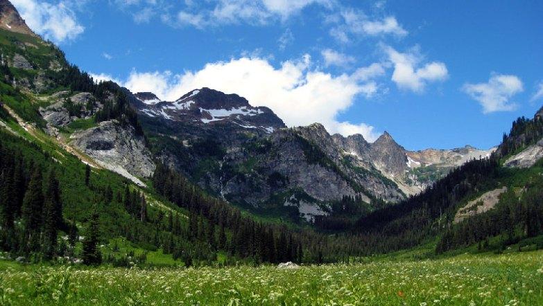 Spider Meadow, Glacier Peak - Photo by brewbooks
