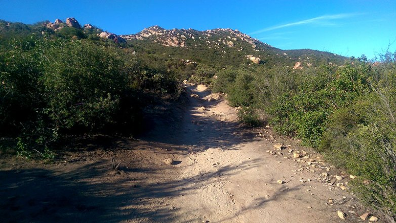 Iron Mountain Trail