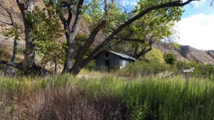 Willet Camp - Hiking and Camping in Los Padres National Forest
