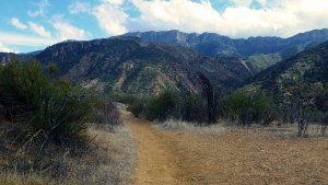 Sespe River Trail in Los Padres National Forest