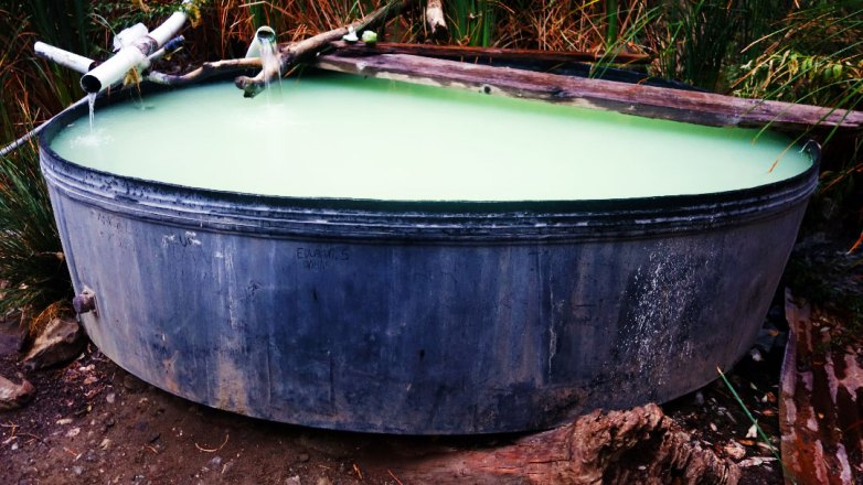 Willet Hot Springs Tub - Our Campsite - Hiking and Camping in Los Padres National Forest