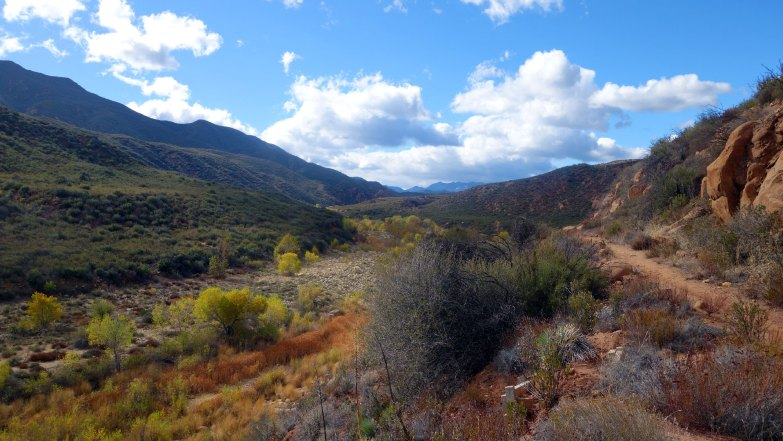 Autumn Colors - Hiking and Camping in Los Padres National Forest