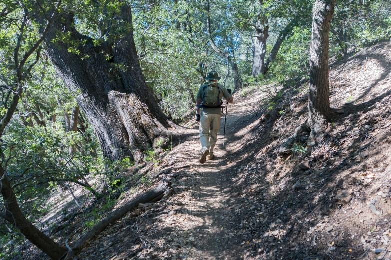 Noble Canyon Hike