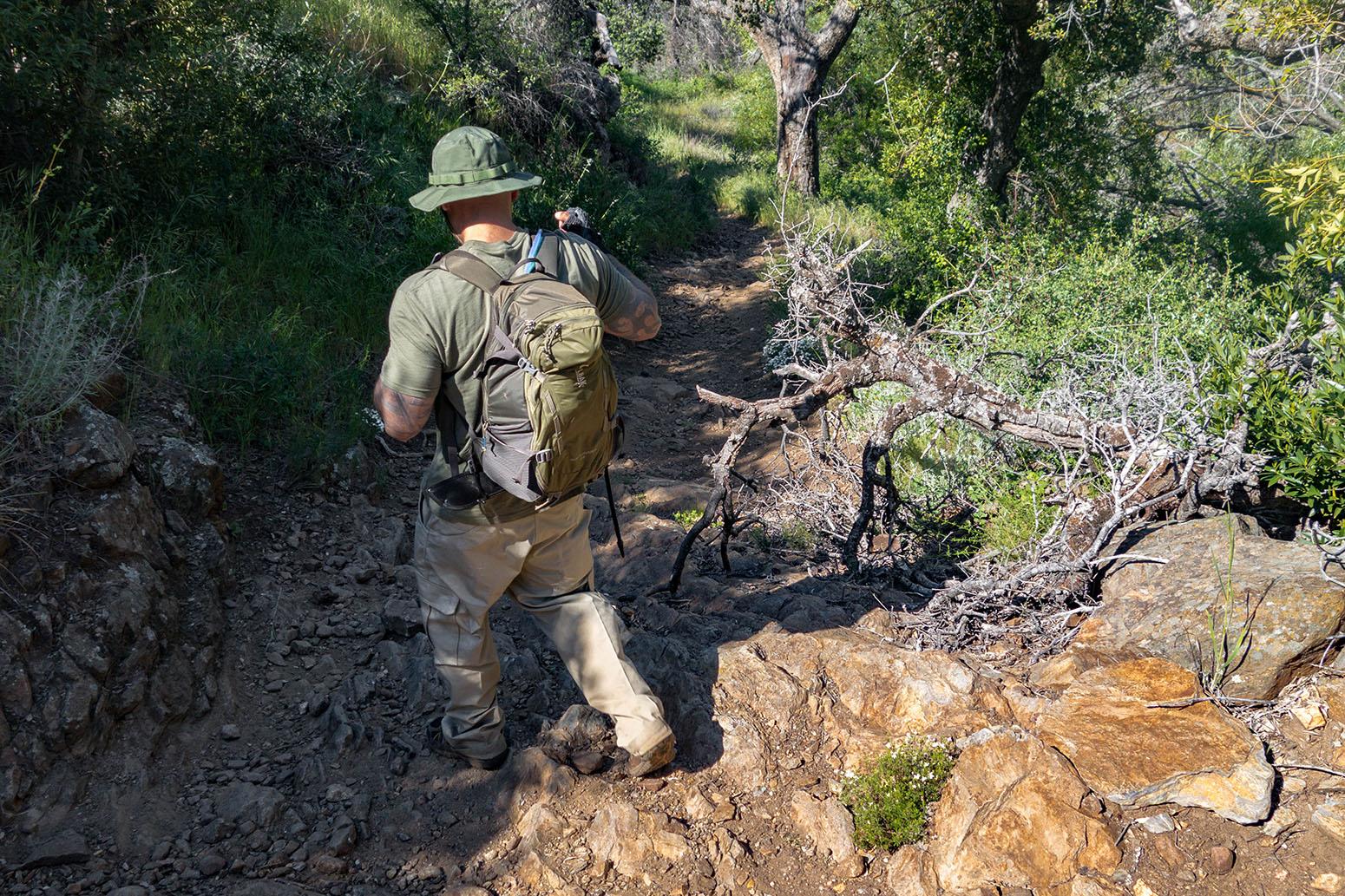 Noble Canyon Trail