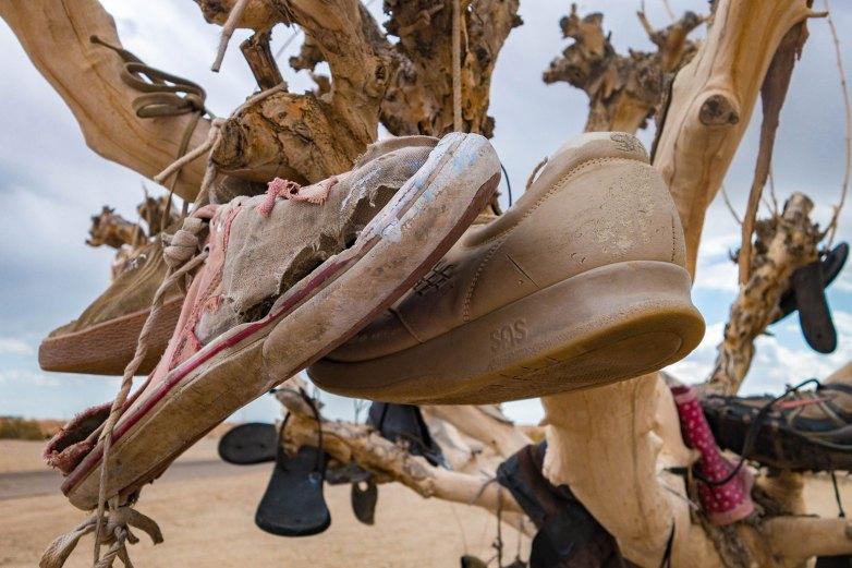 Salton Sea - Shoe Tree