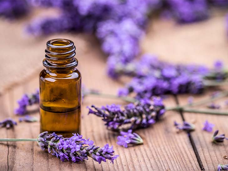 Mix Aloe Vera gel with Lavender oil - Gethealtysoon.info