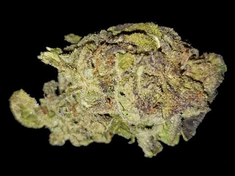 Grape Ape