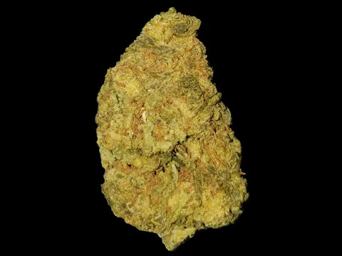 Lemon Skunk