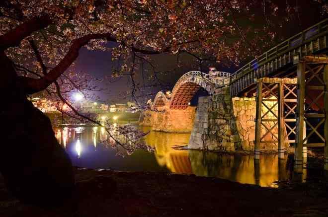 Kintai-kyo Bridge at night during cherry blossom season by Tori Maas