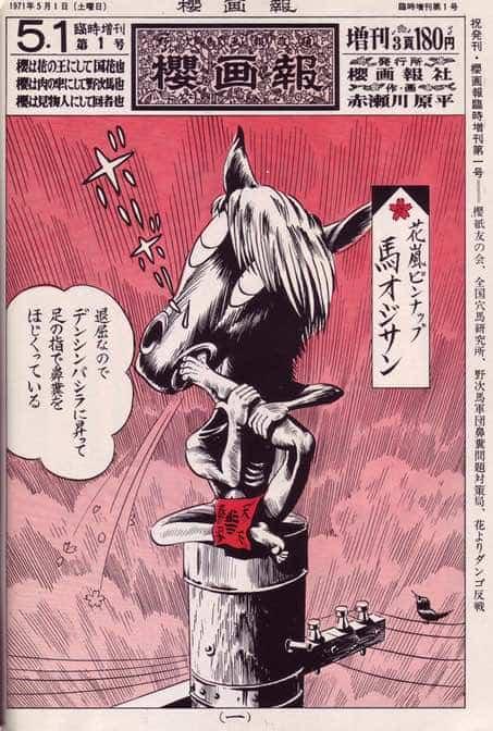 sakura illustrated