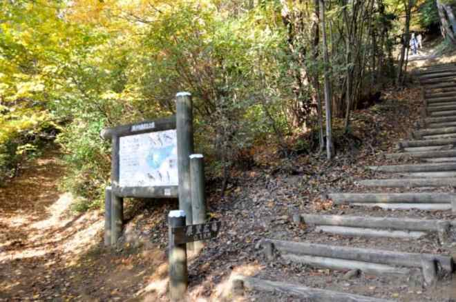 (31) Wooden steps to the summit