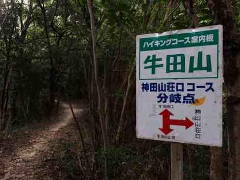 Ushita-yama to Mitate-yama - 21