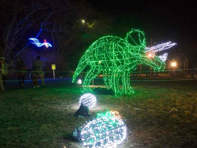 hiroshima-botanical-gardens-christmas-illuminations-12