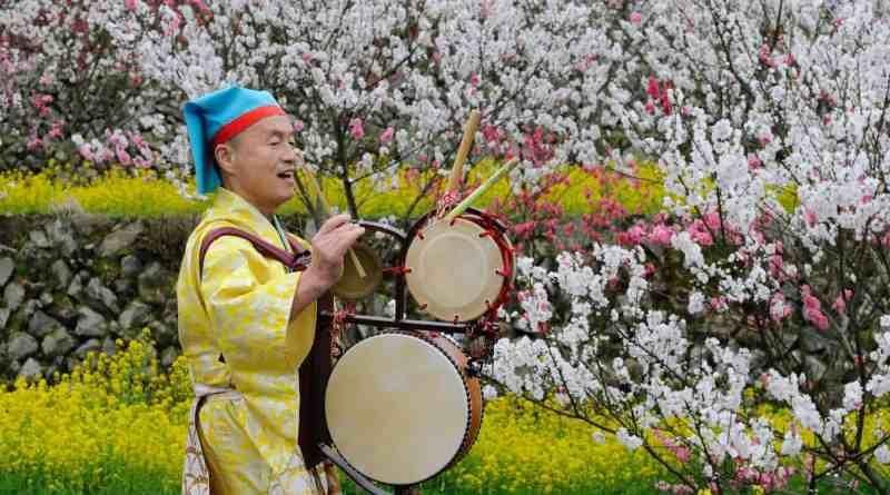 Hanamomo peach blossom festival in Kaizumi, Ohnan