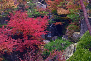 sankeien garden by kamoda