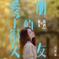 田馥甄 (Hebe Tien) - 愛了很久的朋友 [24bit Lossless + AAC 320 / WEB] [2018.03.29]