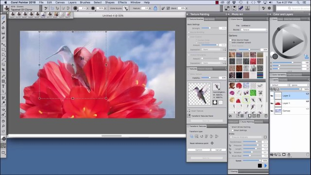 Corel Painter For MacOSX