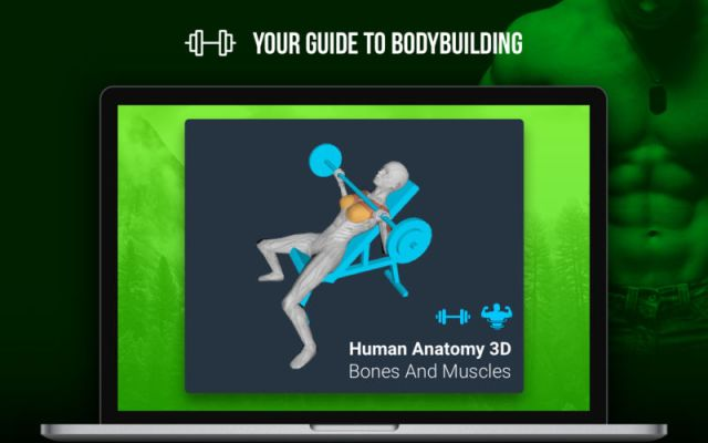 Human Anatomy 3D For MacOSX