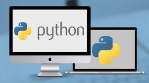 The Python Programming For Anyone Immersive Training