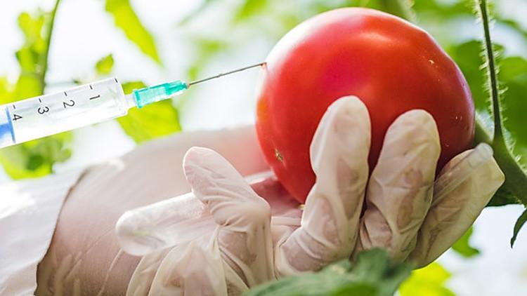 [100% OFF] Plan de Defensa Alimentaria