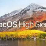 MacOS High Sierra v10.13.3 (17D47) Download