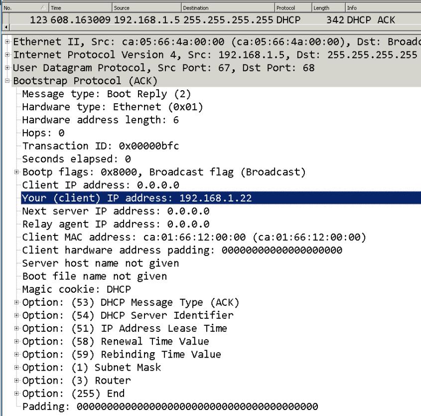 DHCP process wireshark