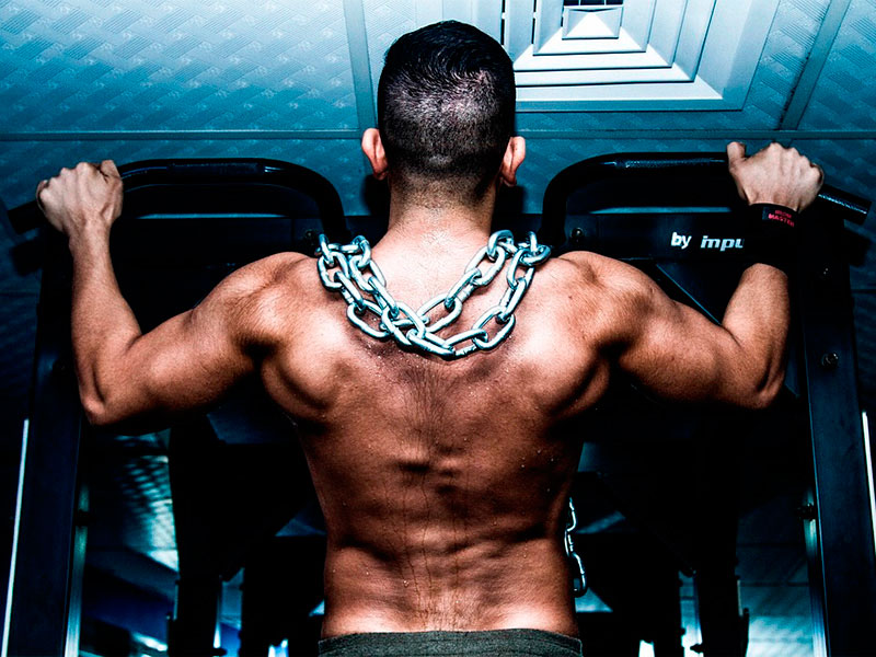 Best Supplements to Get Ripped Review