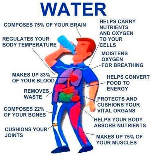 Water information