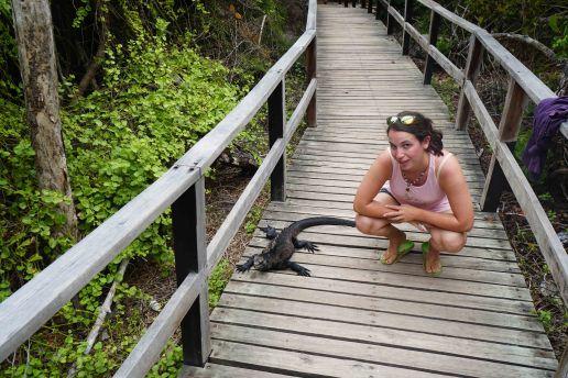 iguana concha and me sm