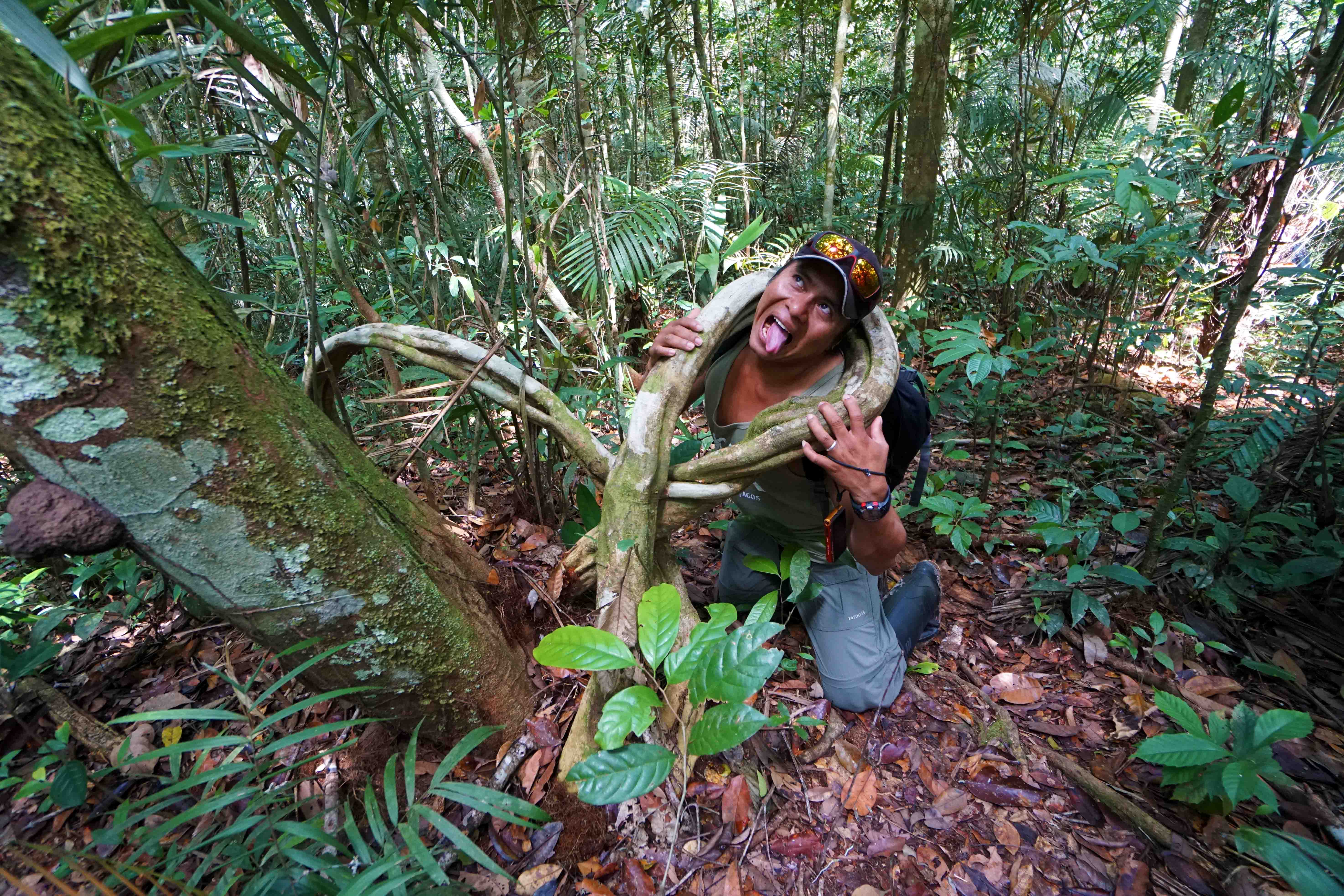 8 Miguel strangled by tree sm