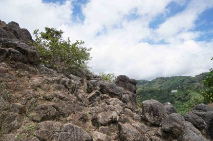 40 rocks sm