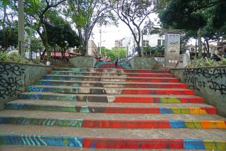 62 Parrot Stairs sm