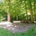 Area di sosta nella foresta