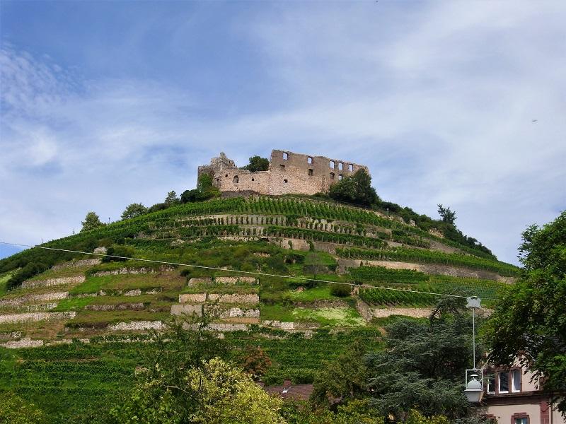 "Foresta Nera in Bici, Quarta Tappa: Staufen e la ""Toscana"" Tedesca"